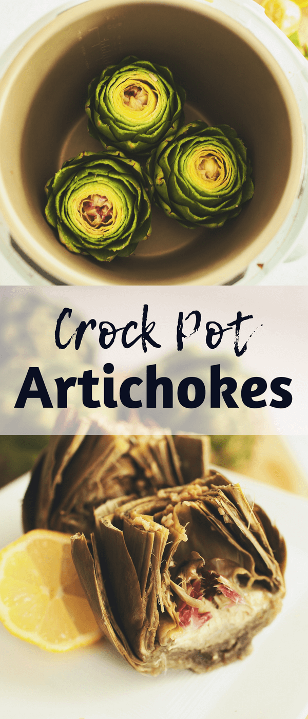 Crockpot Artichokes | How to cook artichokes in a slow cooker