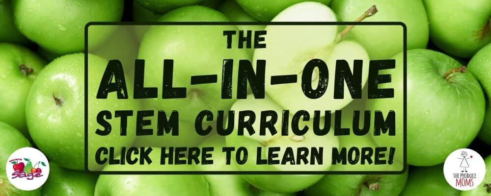 Stem Curriculum Banner Ad