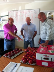 Dan Corsaro is introduced to Breeze Apples at the Freshco Office