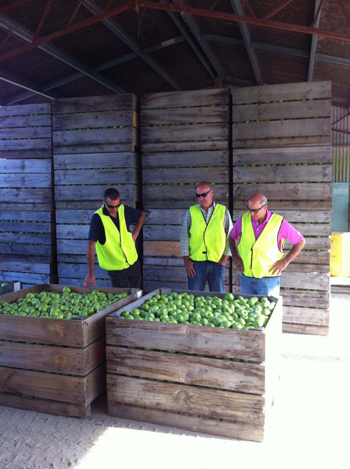 Indy Fruit Visits New Zealand Grower The Produce Mom