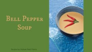 Bell Pepper Heated Chilled Soup