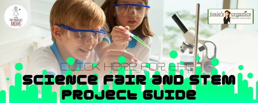Science Fair and STEM Curriculum Banner Ad
