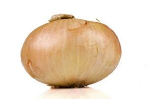 Onion Squares | Recipe