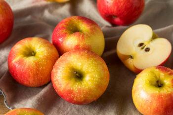 Sweet and Savory Honeycrisp Apple Recipes