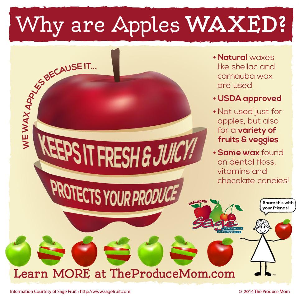 Apple fruit infographic