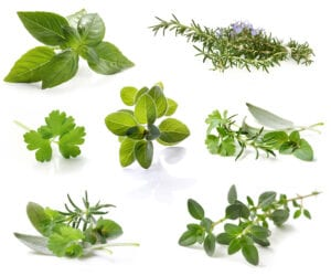 Everything you need to know about cooking with fresh herbs