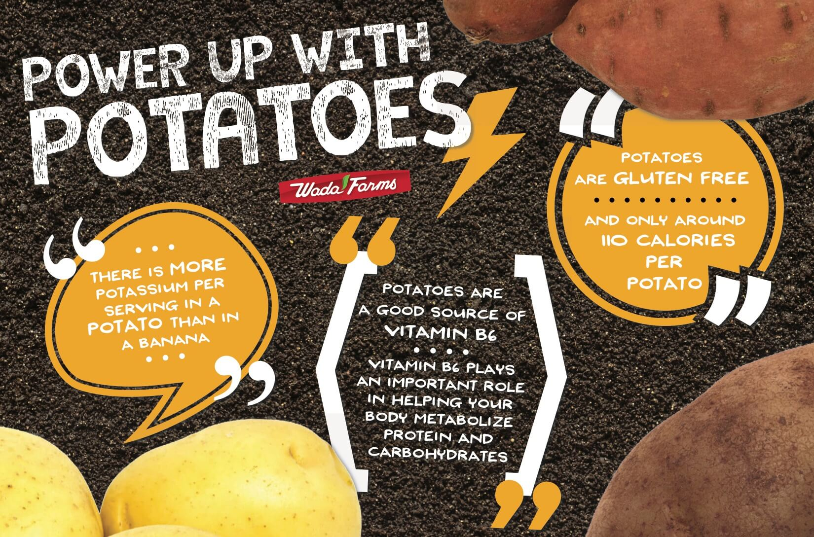 Power Up With Potatoes