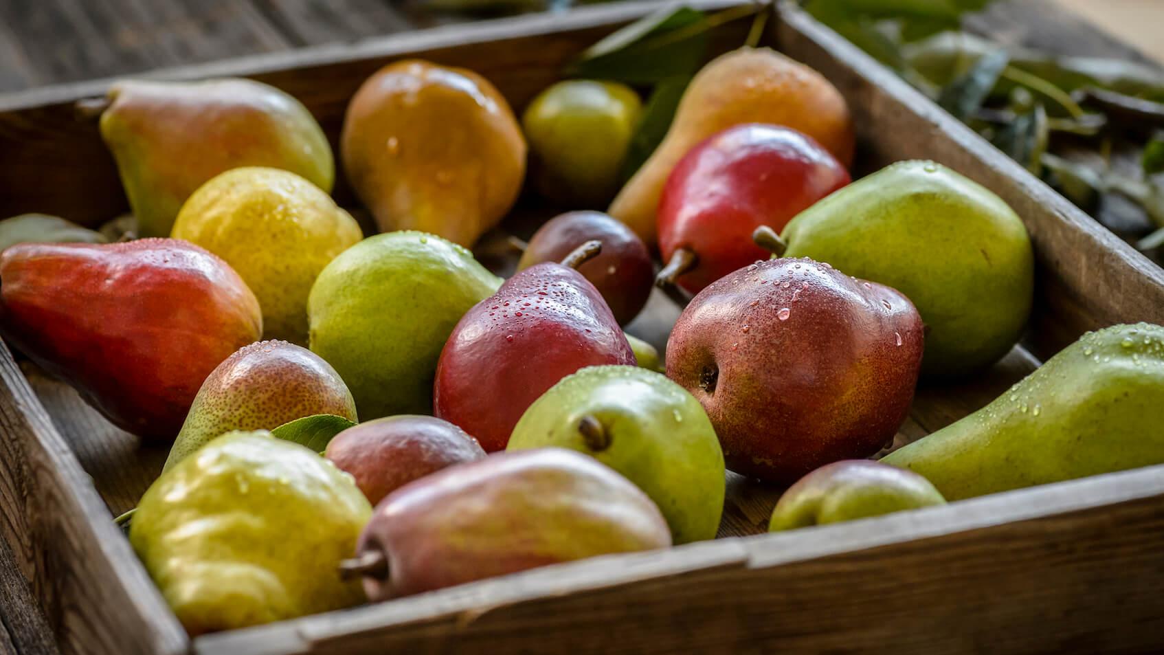 USA Pear varieties