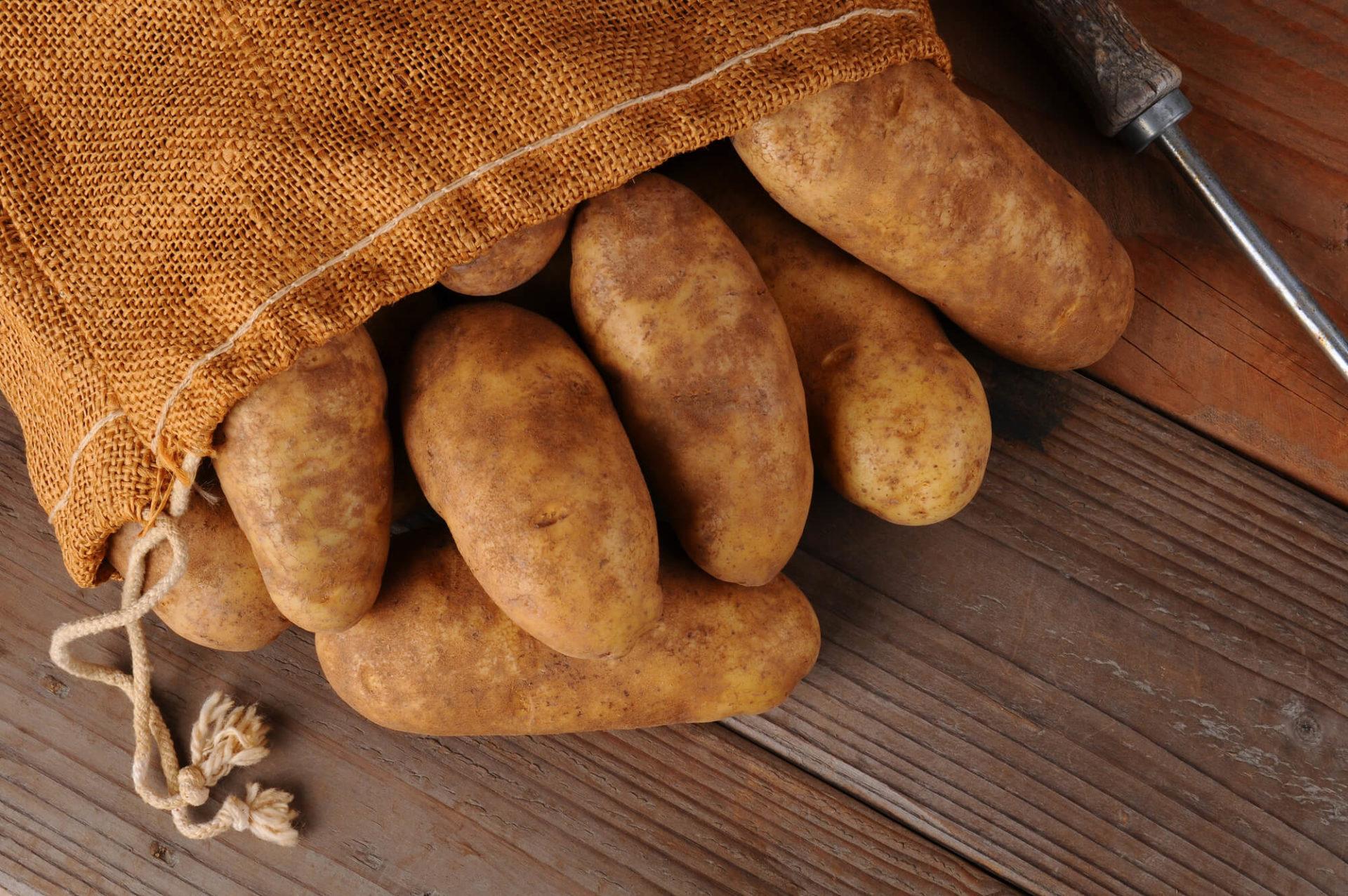 Wada Farms: Year-Round Organic Potatoes