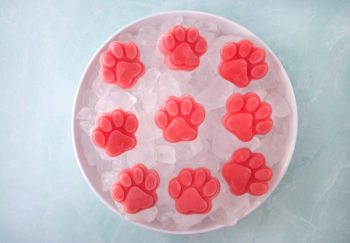 4 Simple Watermelon Dog Treats