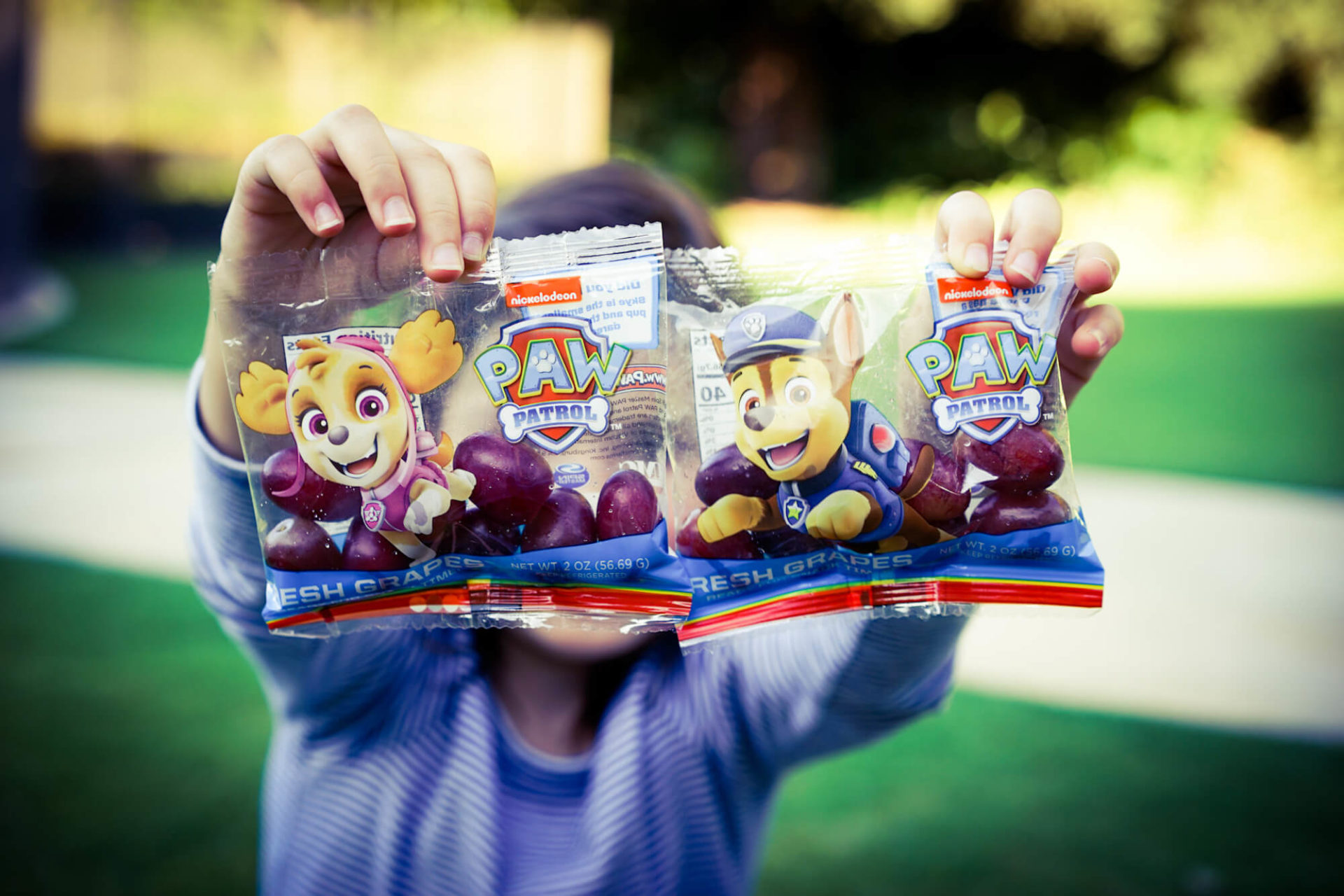 SpongeBob and PAW Patrol Grapes + Grape Flatbread Pizza Recipe