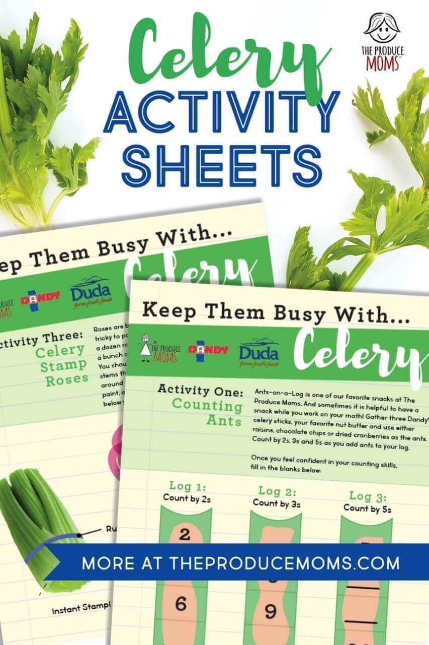 Celery Educational Activity Sheets