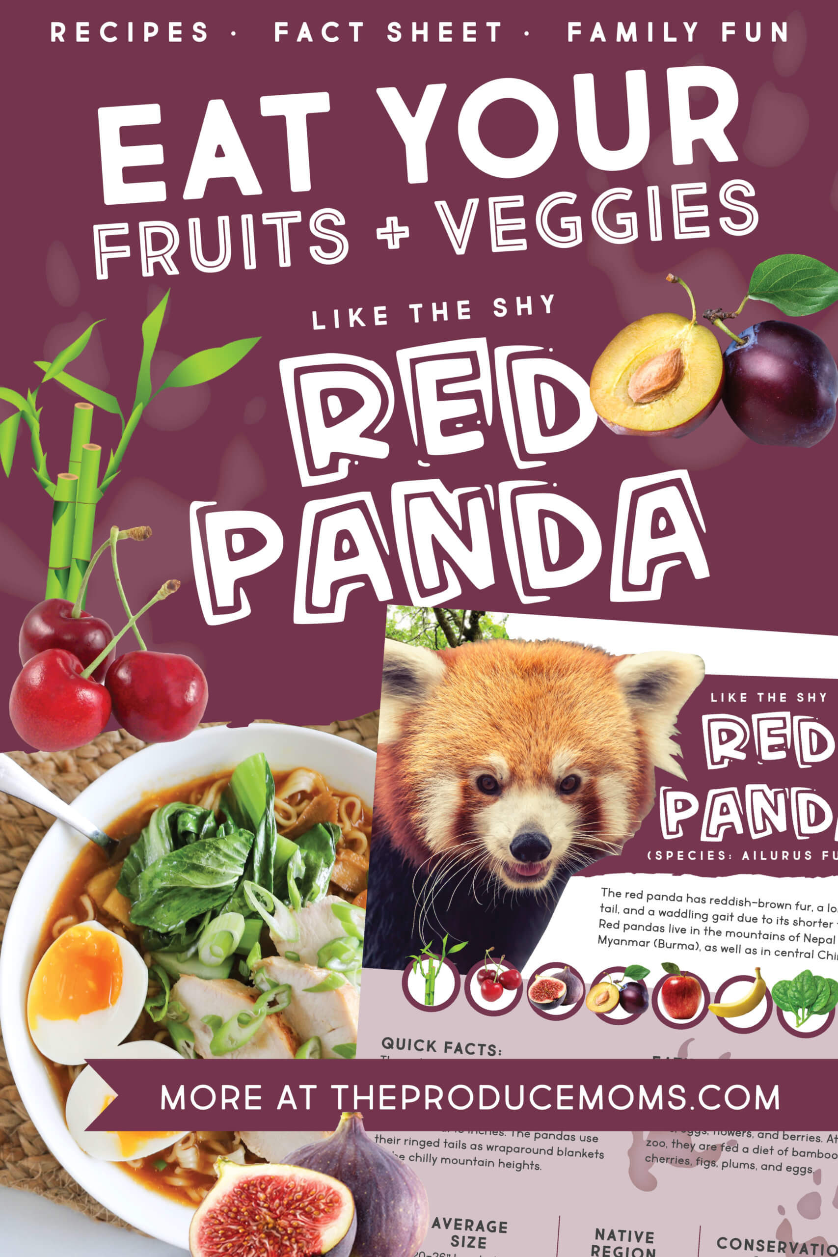 Eat like a red panda