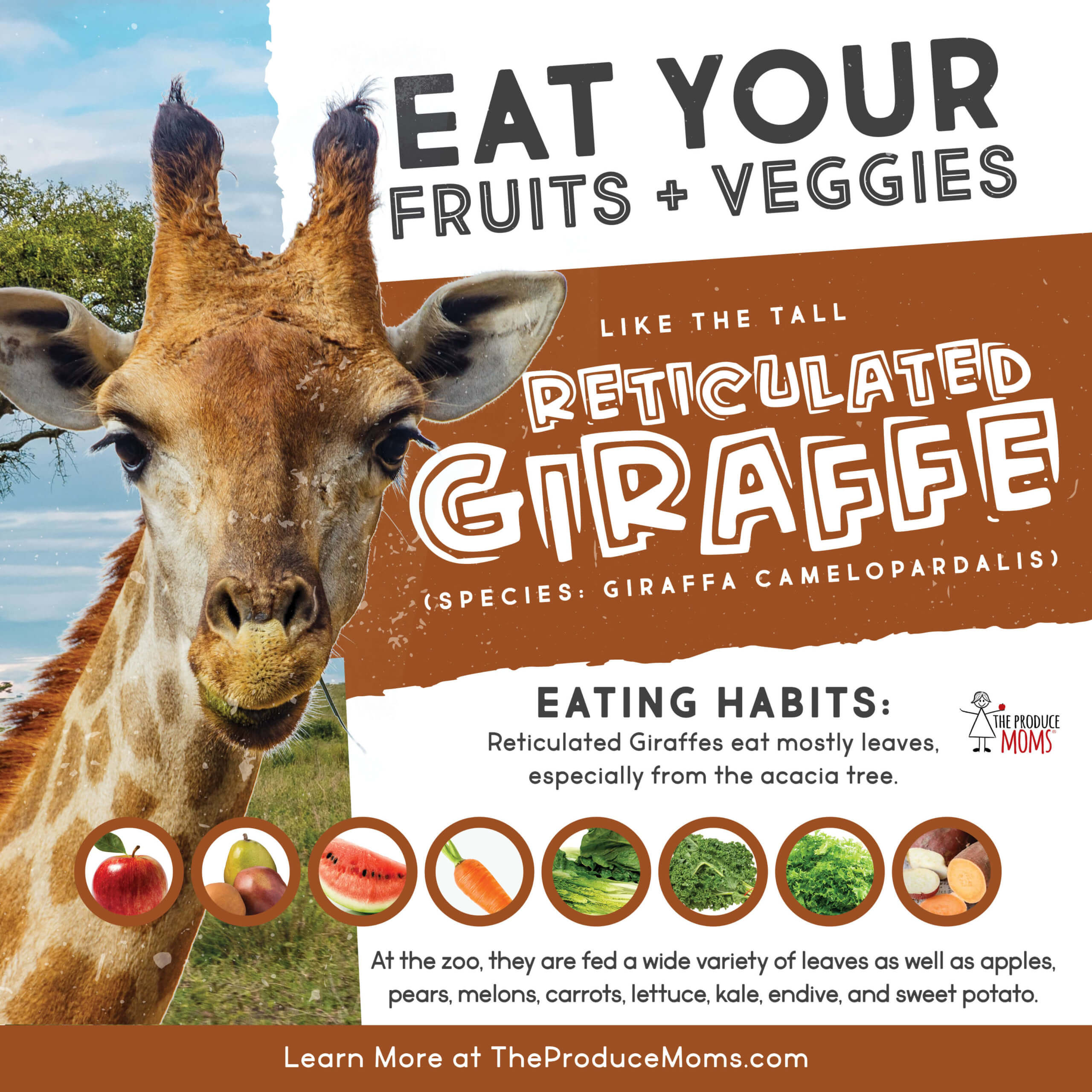 Eat Your Fruits and Veggies Like A Giraffe