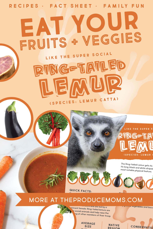 Eat Like a Ring-Tailed Lemur Pinterest Card