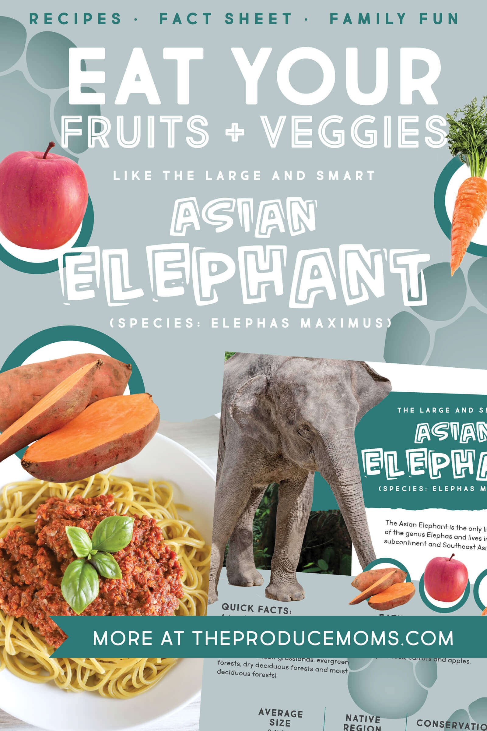Eat Like An Elephant Pinterest Card