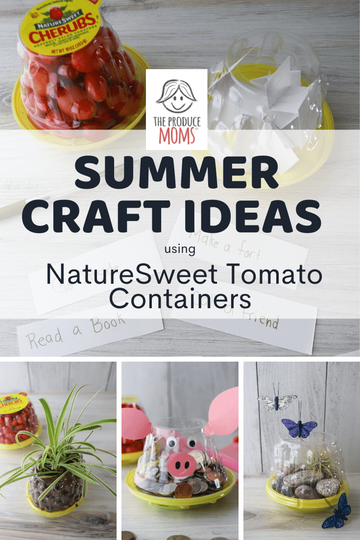 Summer Craft Ideas Using NatureSweet Tomato Containers