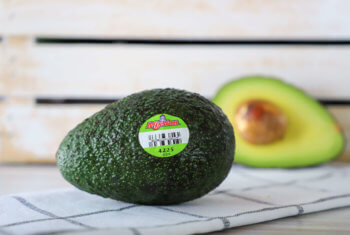Smart Mission Avocado Sizes for any AVOccasion