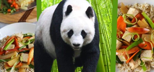 Eat Like a Giant Panda Banner Image