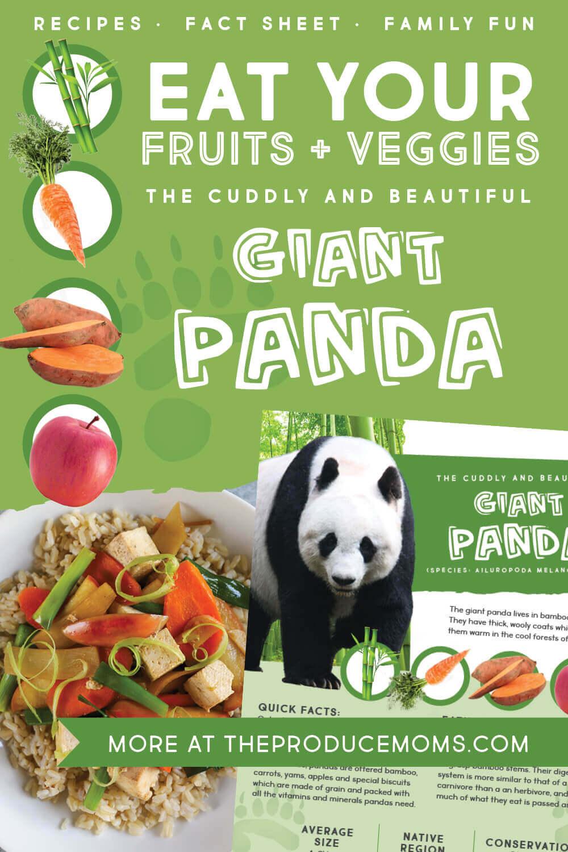 Eat Like an Animal: Giant Panda Pinterest Card