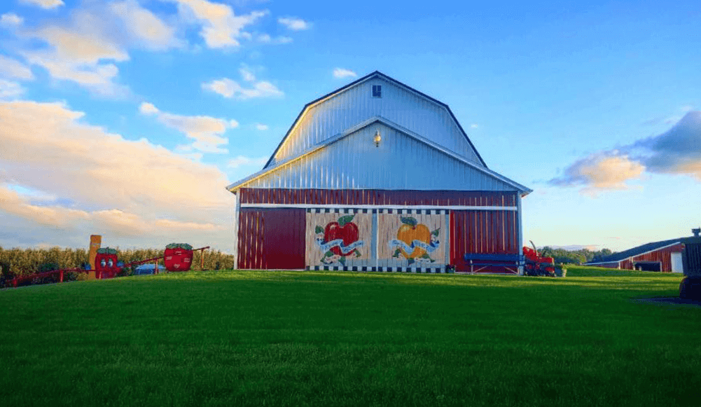 The best apples are grown on Michigan farms