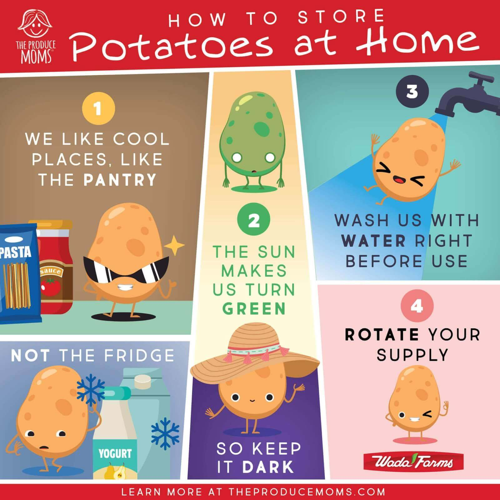 Nutritious Potato Recipes - How To Store