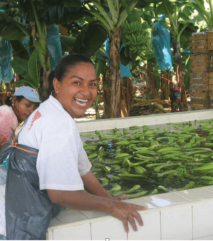 Growing tasty bananas