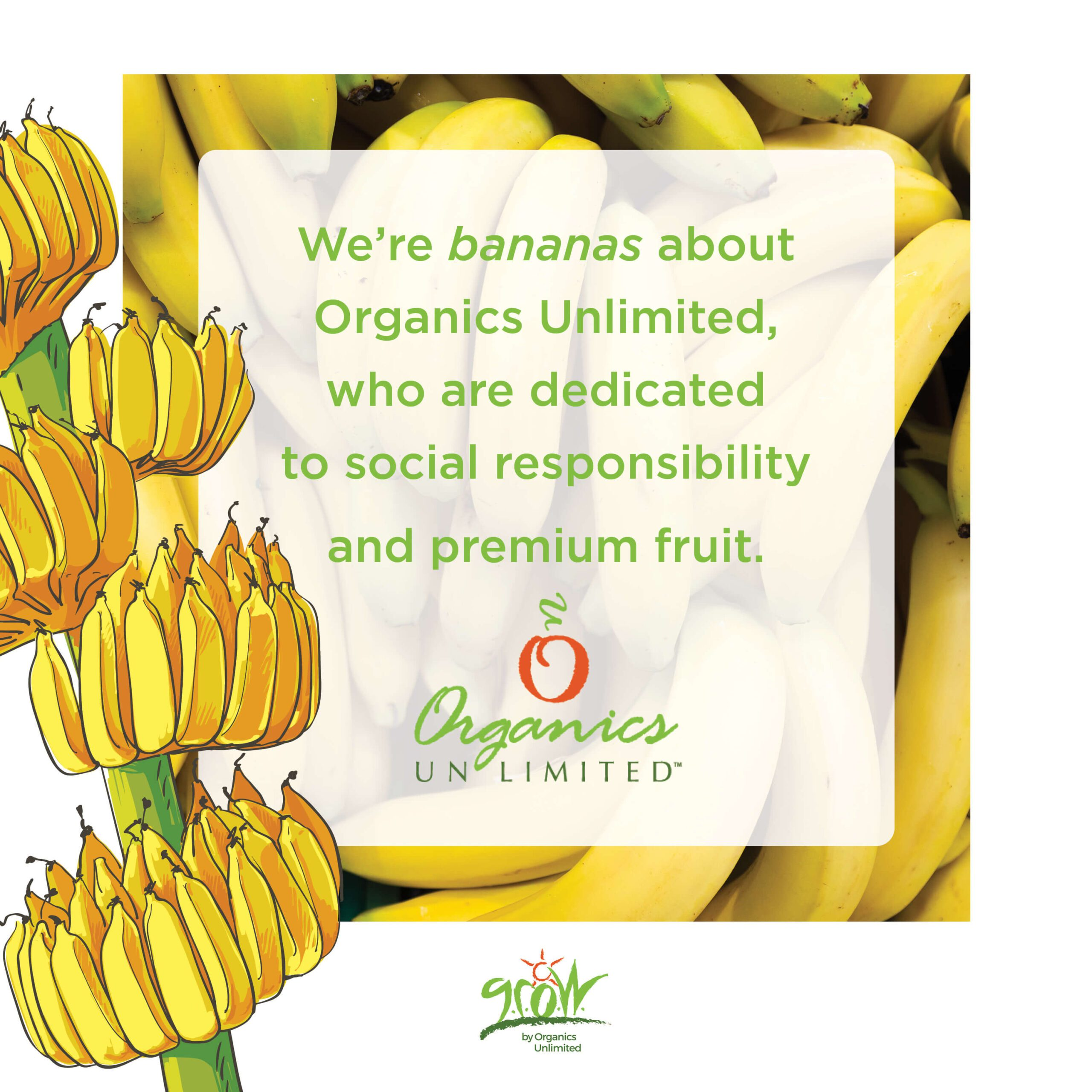 What Organics Unlimited is all about